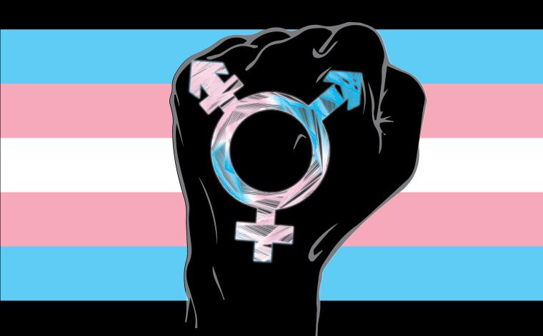 Trans Fist.png